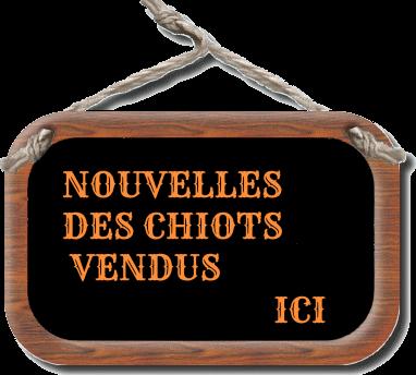 blog-en-vacances-gif25-4.png
